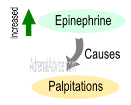 Adrenal Fatigue and Heart Palpitations