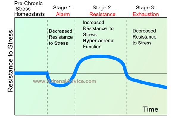 general adaptation response